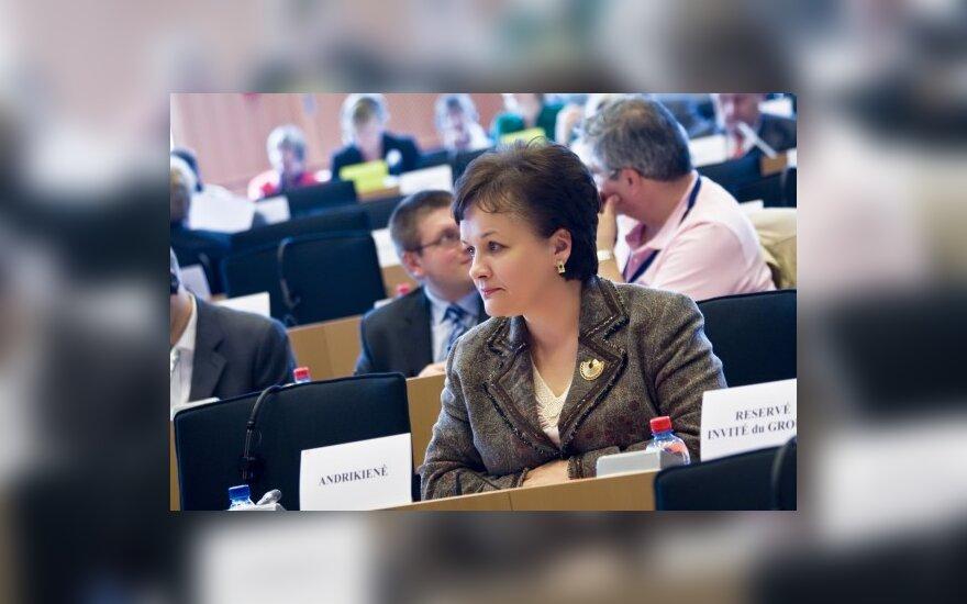 DELFI skaitytojų apklausa: aktyviausia EP yra L.Andrikienė