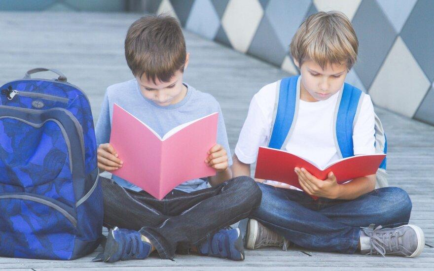 Siūlo valstybinėse institucijose įrengti specialias zonas darbuotojų vaikams