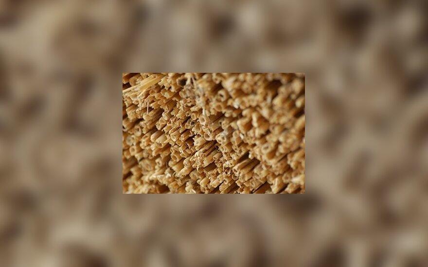 Brangias dujas keičia šiaudų granulėmis