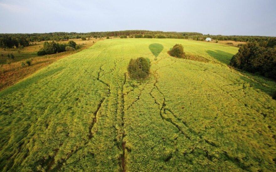 EP siūlo priemones švelninti Rusijos embargo poveikį žemės ūkiui