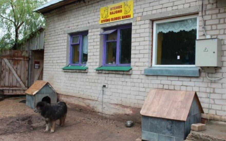 Utenos gyvūnų globos namai, Medenių km.