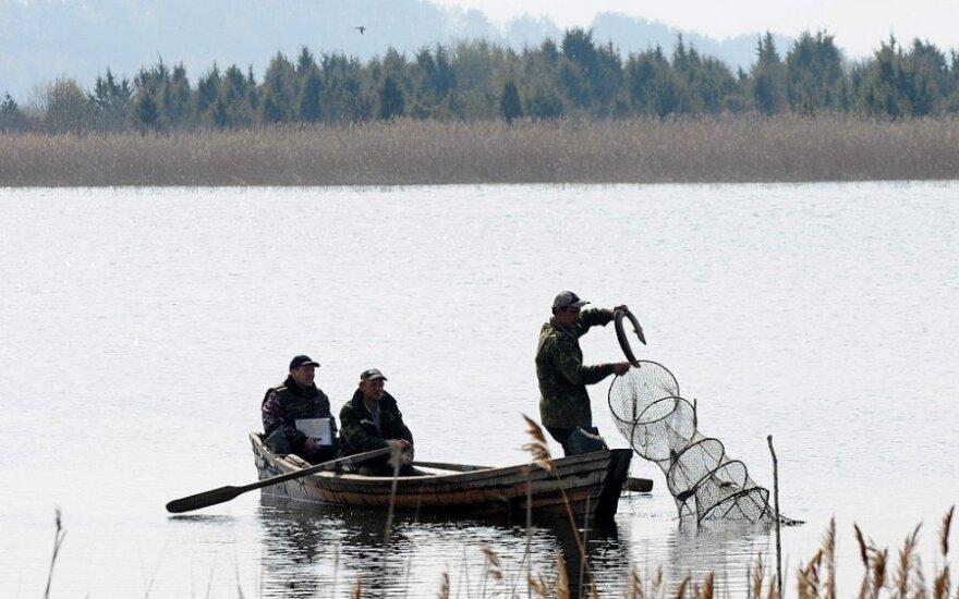 Žvejai  gaudo ungurius (asociatyvi nuotr,)