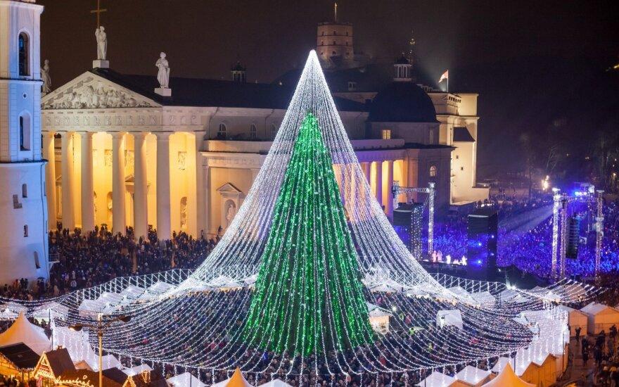 Kalėdinė Vilniaus eglė (S. Žiūros nuotr.)