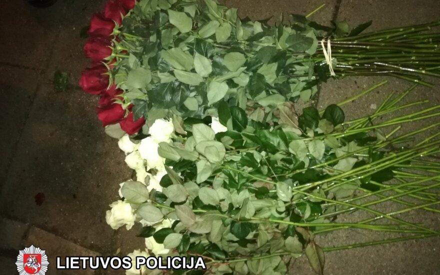 Vagis spruko su šimtu rožių glėbyje