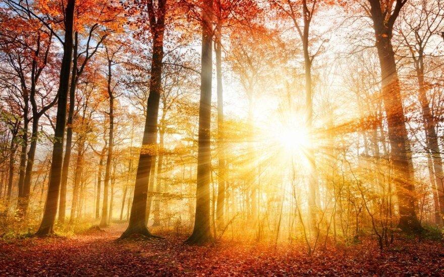 Astrologės Lolitos prognozė rugpjūčio 5 d.: stiprios energijos diena