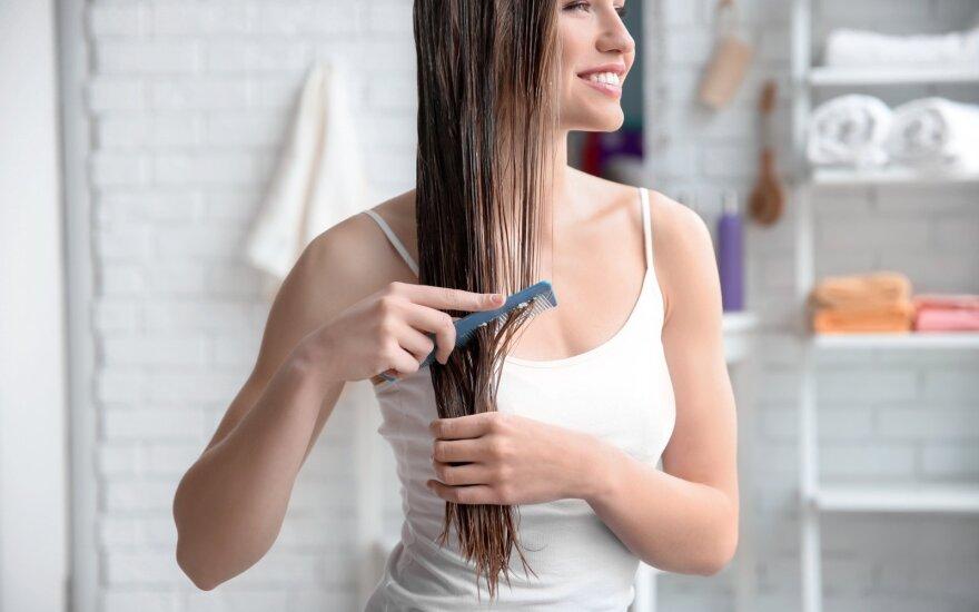 Plaukai, plaukų priežiūra