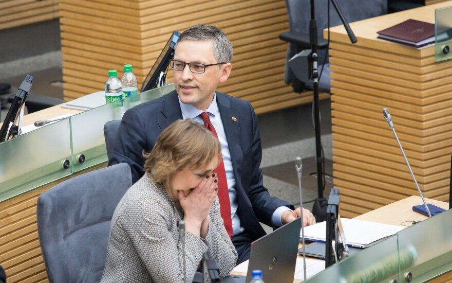 Seimo NSGK prašys mėnesiui pratęsti parlamentinį tyrimą