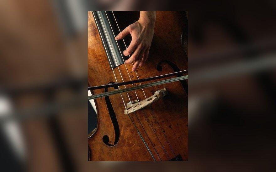 violončelė