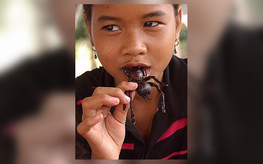 Jauna kambodžietė valgo keptą tarantulą.
