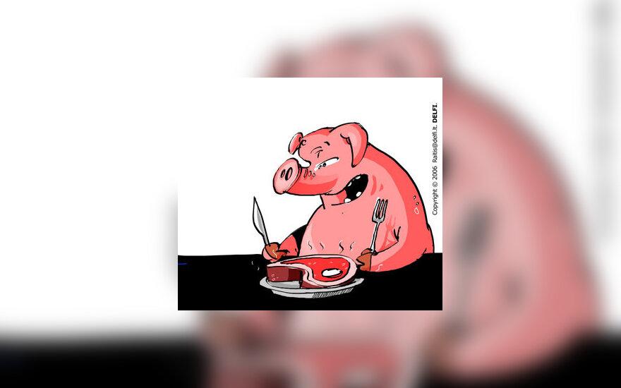 Maistas, valgymas, apsirijimas, kiaulė - karikatūra
