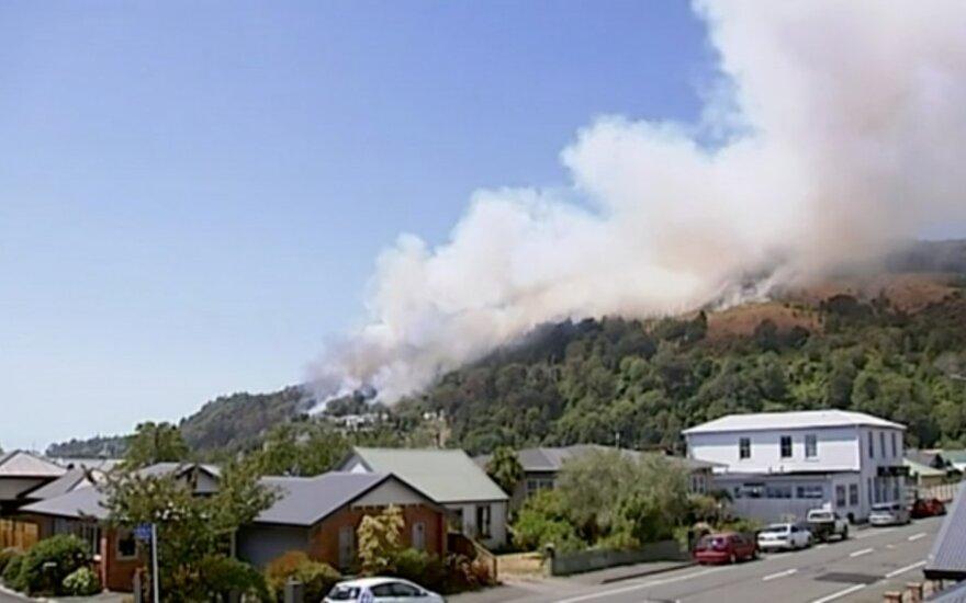 Veikfildas, Naujoji Zelandija