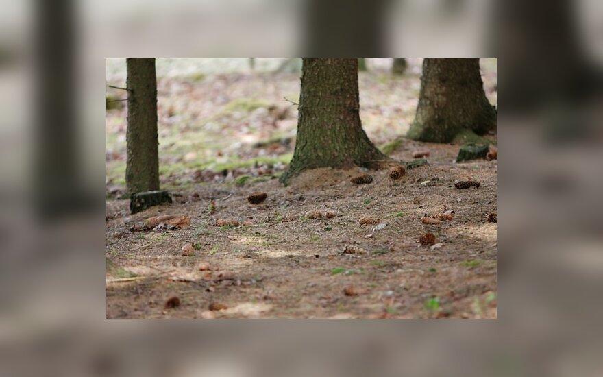 Vilniuje rastas negyvas jaunuolis surištomis rankomis