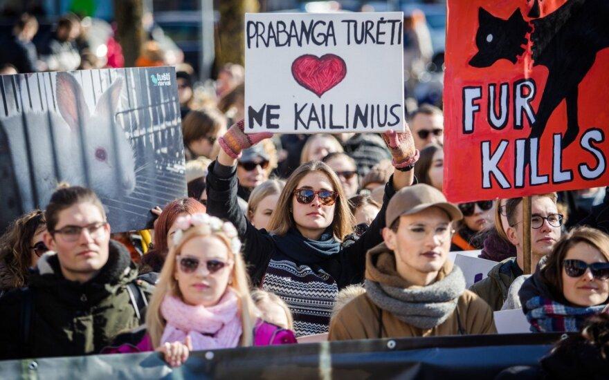 Keli šimtai žmonių prie Seimo pasisakė prieš kailinių žvėrelių išnaudojimą