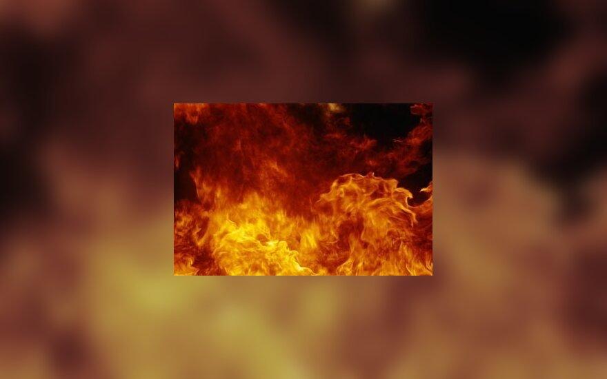 Švenčionių r. per gaisrą žuvo 3 žmonės