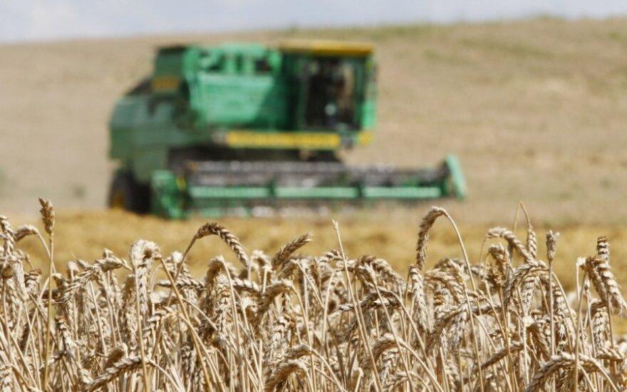 Lithuania's grain processor Malsena acquiring Estonia's Balti Veski