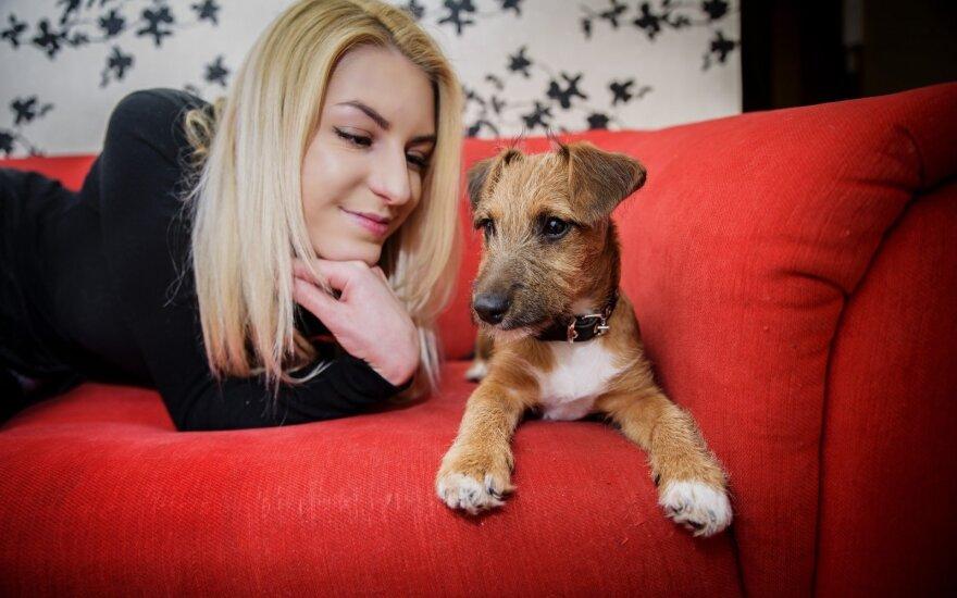 Priglaustas šuo praskaidrino gyvenimą: tokios gražuolės dar nebuvome matę