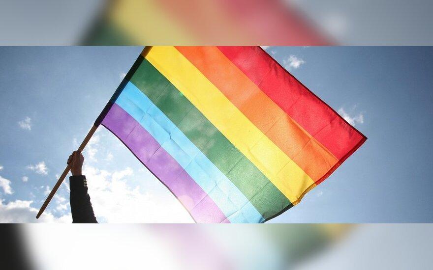 Eurokomisarė apie homofobijos apraiškas Lietuvoje: ES reaguos, jei kuri nors šalis nepaisys normų leisti kiekvienam gyventi, kaip nori