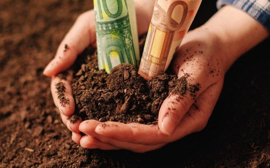 Grūdai, žemės, pinigai