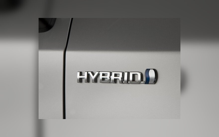 Hibridiniams modeliams kuria garsus