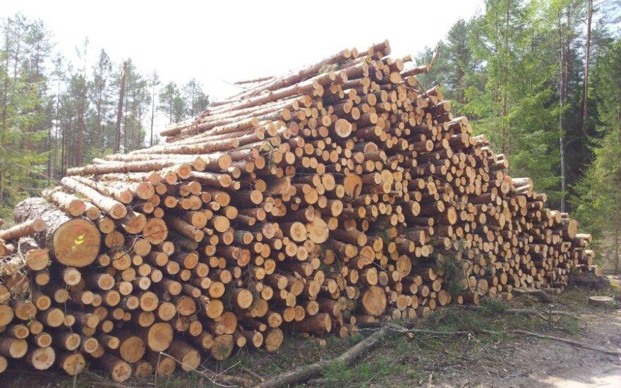 """""""Vakarų medienos grupės"""" projektas Baltarusijoje pasiekė finišą"""
