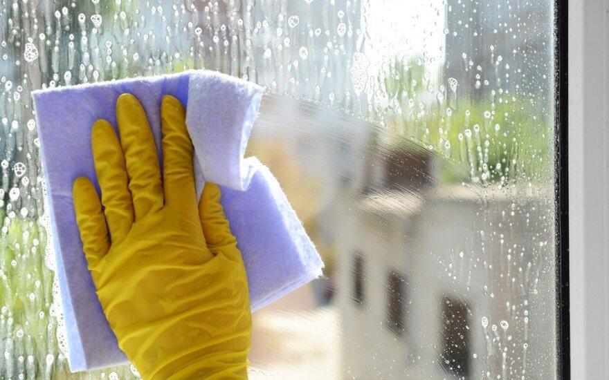 Kelios gudrybės, padėsiančios greitai ir kokybiškai išvalyti langus