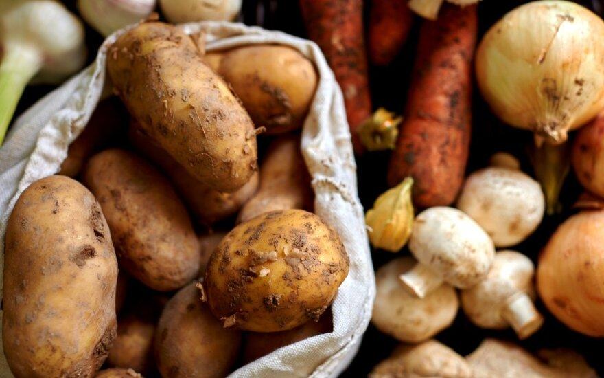 Ar netobulos išvaizdos vaisiai ir daržovės blogesni už gražuolius?