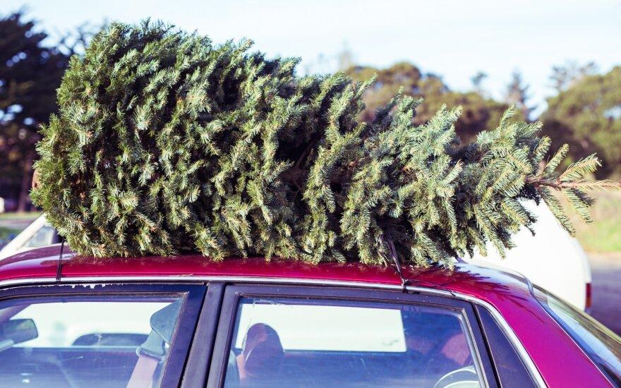 Prieš pat Kalėdas įsėdau į stabtelėjusį prie manęs automobilį. Šio žingsnio niekada nepamiršiu