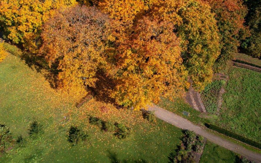 Klimatologai skelbia, kada sulauksime nemalonių permainų: labiausiai pasisekė vienam Lietuvos regionui