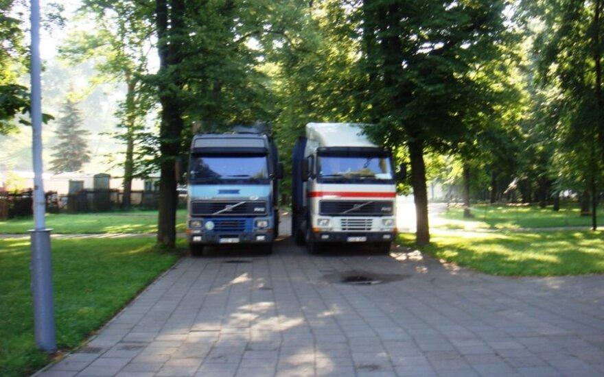 Vilniuje, Sereikiškių parke. 2012-07-11