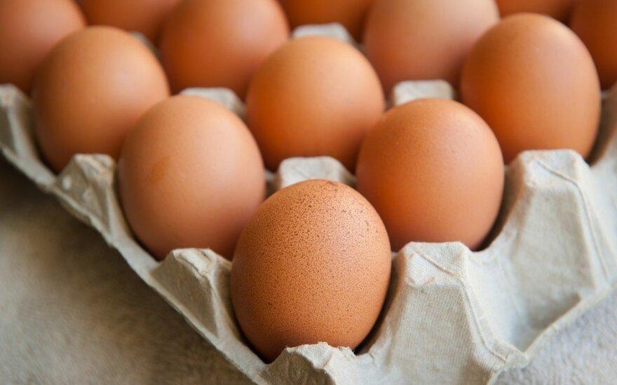 6 buities rūpesčiai, kuriuos lengvai išspręs... kiaušinis