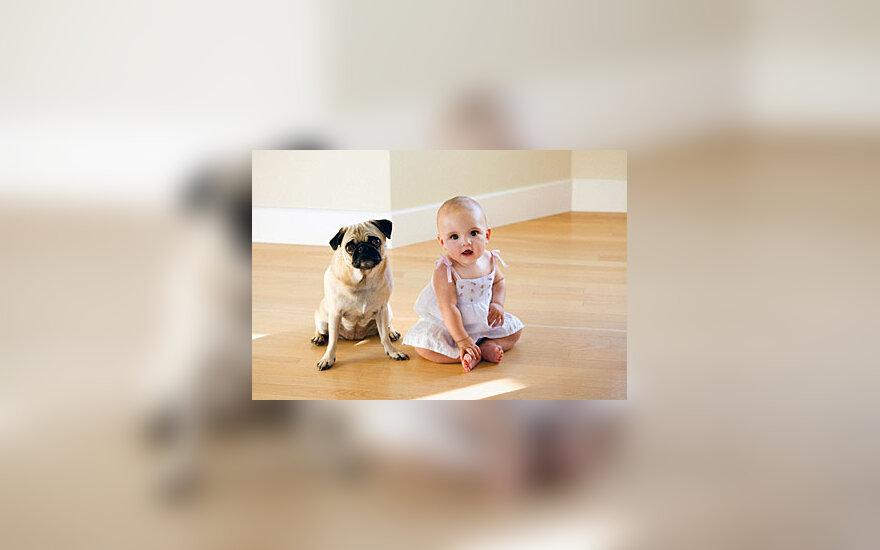Šuo ir kūdikis