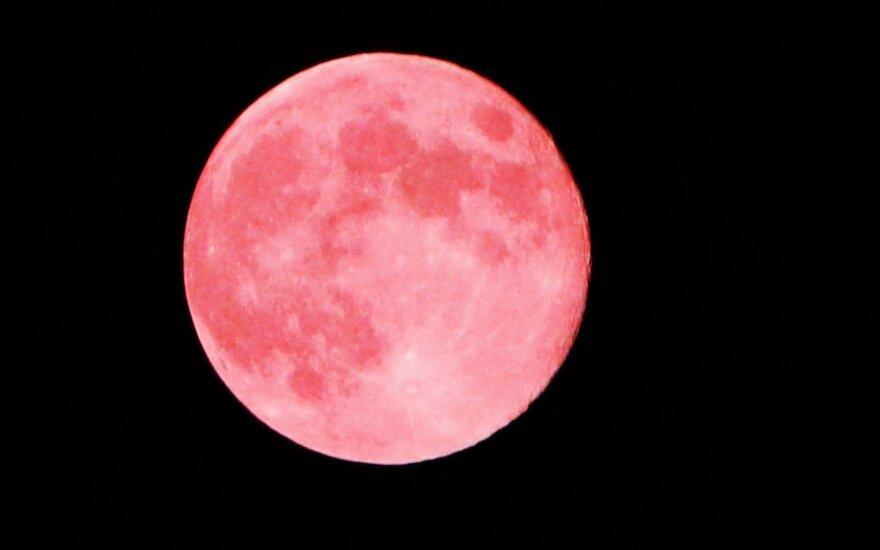 Mėnulis traukiasi, vėsta ir dreba