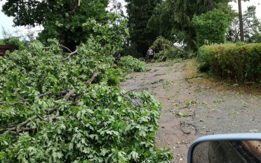 Squall causes damage, power problems in Lithuania