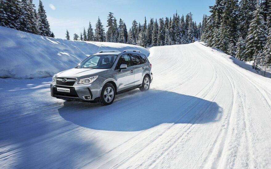 """Subaru Forester"""