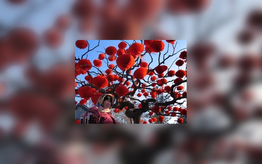 Kinų Naujieji metai prasideda jau šiandien. Nepamirškite raudonos spalvos!