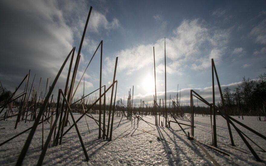 Džiugina ne visų ežerų tyrimai: kai kur žvejams nėra ką veikti