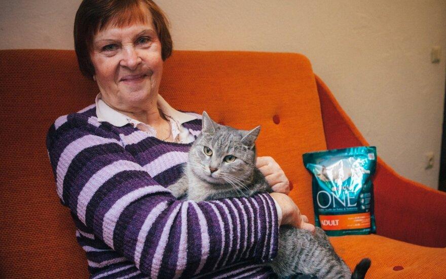 Sužeista katytė Soja tapo namų karaliene