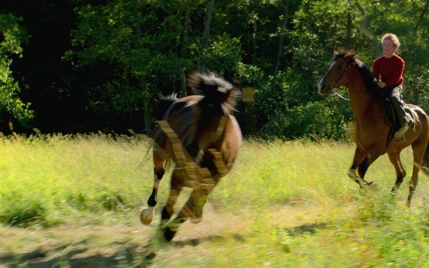 Vogti arklius