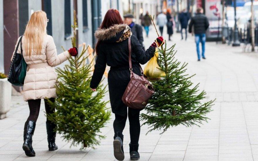 Kaip Kalėdas sutiks gatvėje kalbinti vilniečiai?