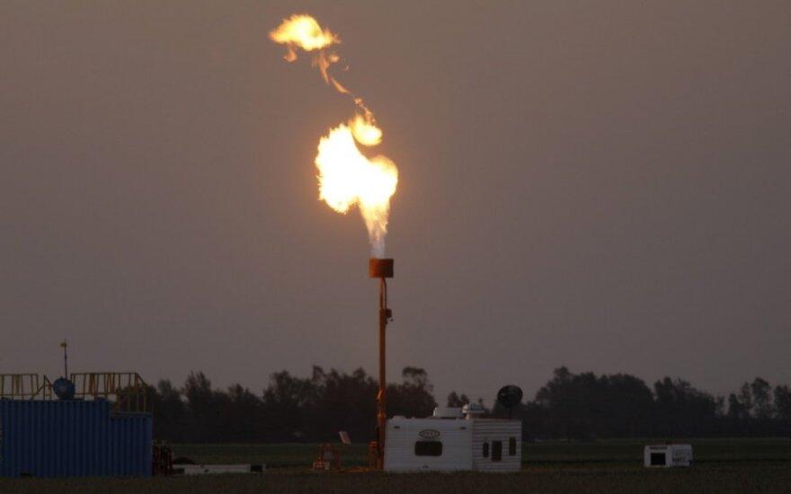OPEC: iki 2020 metų naftos kaina pakils
