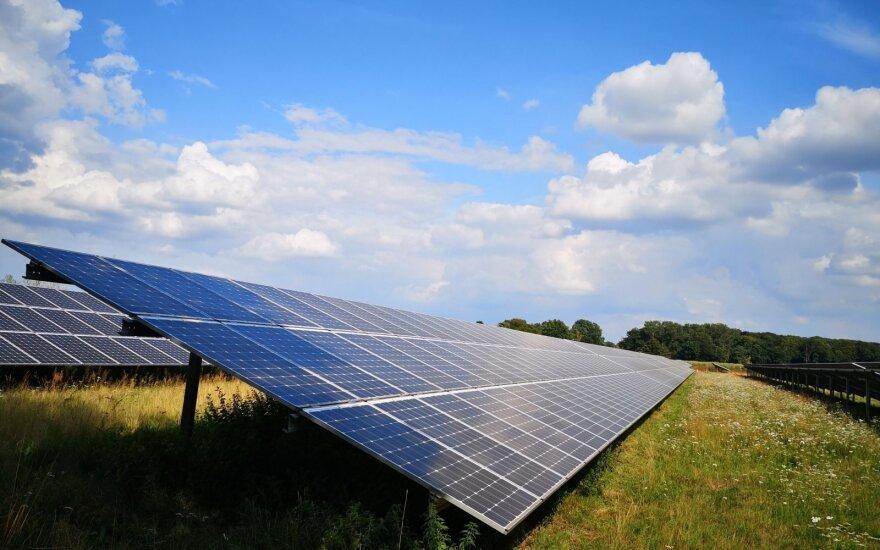 Utenoje išdygsiantis saulės parkas leis pasigaminti ne tik daugiau žalios energijos, bet ir taps namais bitėms
