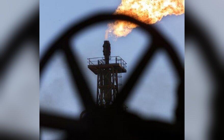Ekspertai: jei OPEC dar sumažins naftos gavybą, jos kaina gali trečdaliu padidėti