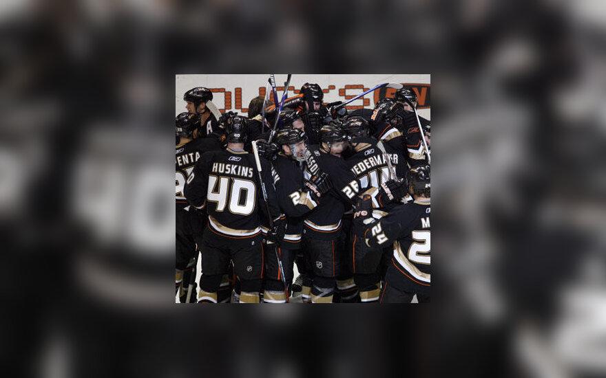 """""""Anaheim Ducks"""" ledo ritulininkai - konferencijos finale"""