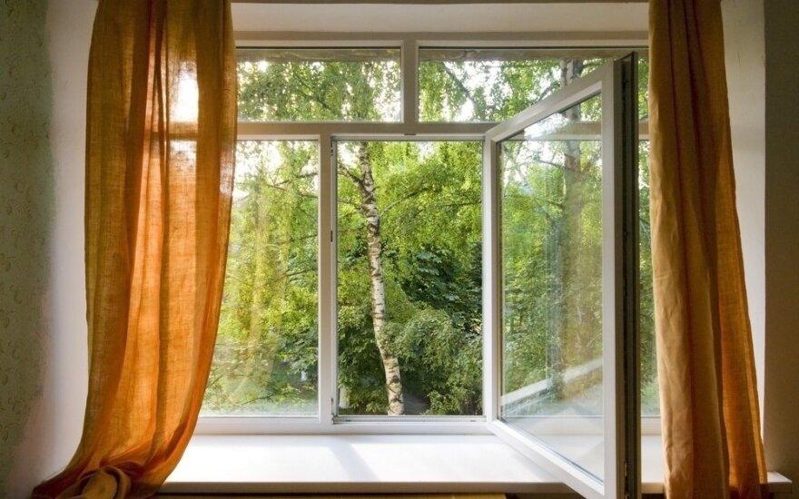 Namų langus atverkite atsargiai: nežinote, ką galite įsileisti