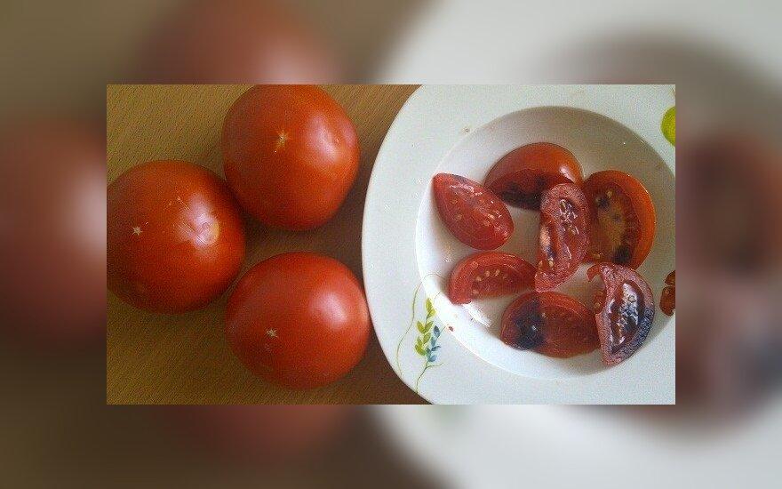 Keistai pamėlę pomidorai