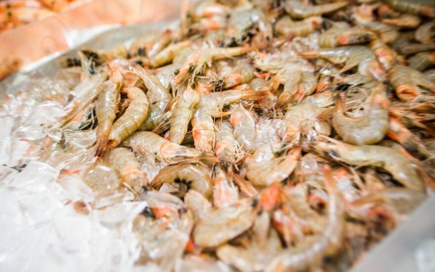 Lietuvoje gimsta visiškai naujas jūros gėrybių verslas: nutarta auginti tikrą delikatesą