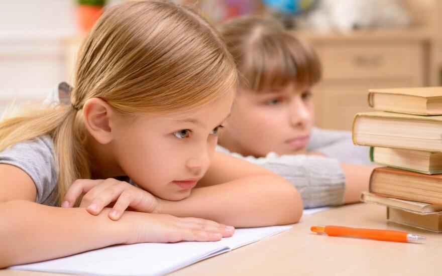 Seimas nuo kitų metų rugsėjo leido vaikus mokyti šeimoje