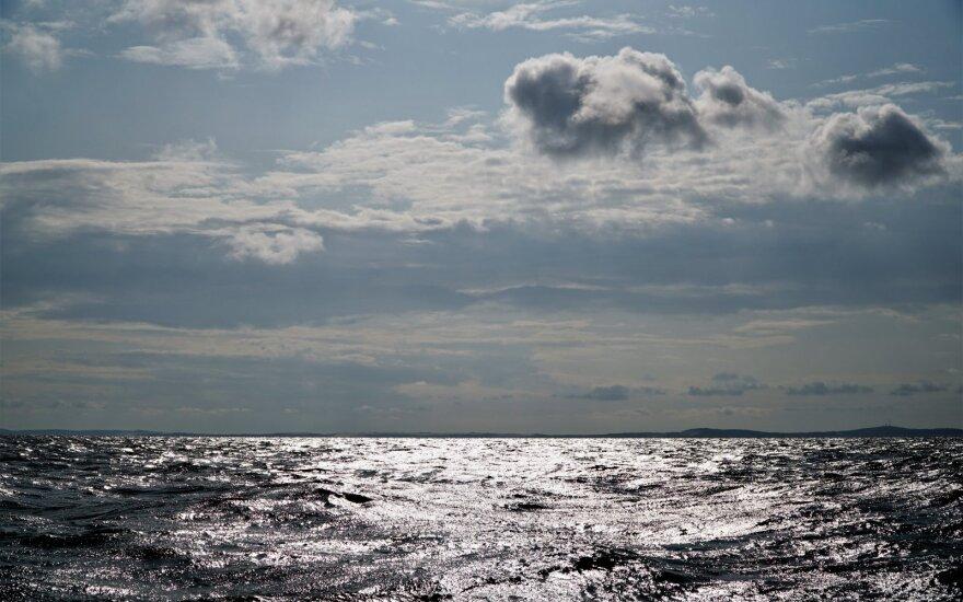 Aiškinantis galimą taršą Kuršių mariose, specialistai tirs sužvejotą žuvį