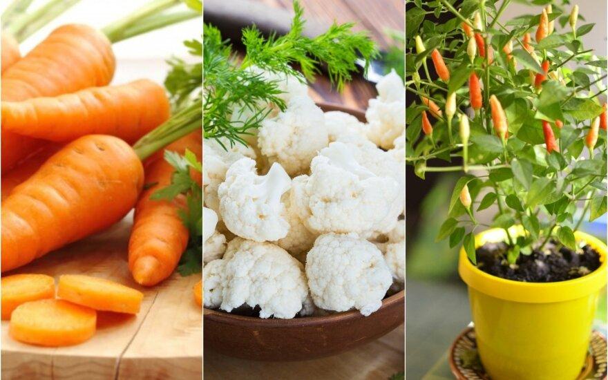 Septynios daržovės, kurios efektyviausiai padeda atsikratyti antsvorio