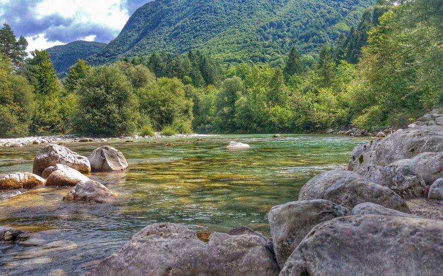 Soca upė